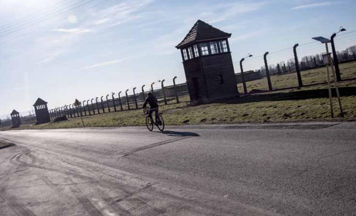 Oggi chi vive ad Auschwitz cerca solo normalitá